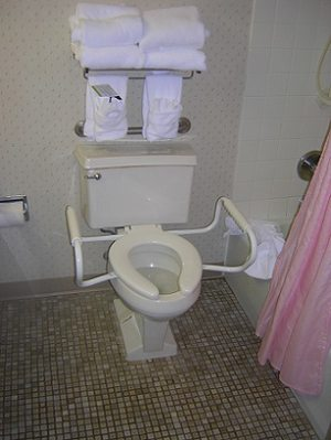 toilet with handles
