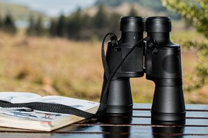 binoculars for birdwathcing