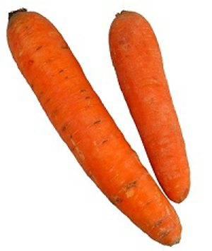 carrot.senior-friendly recipes
