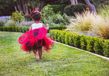 child in ladybug costume.alert1