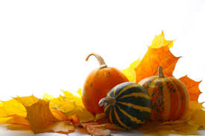 pumpkins and fallen leaves