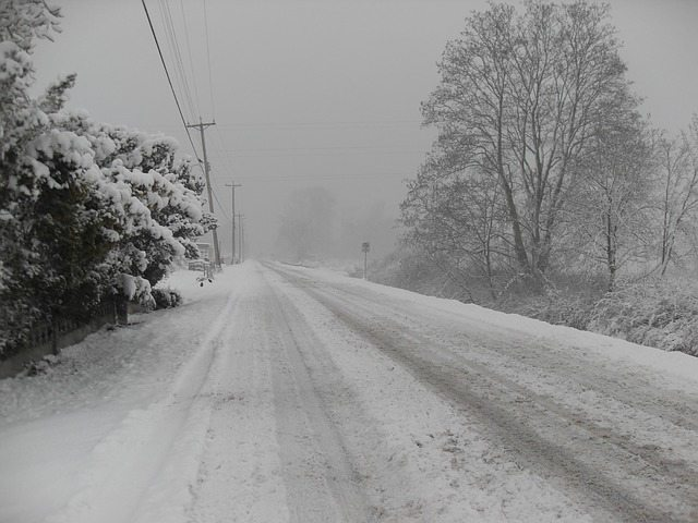 snowy road. alert1 medical alert systems